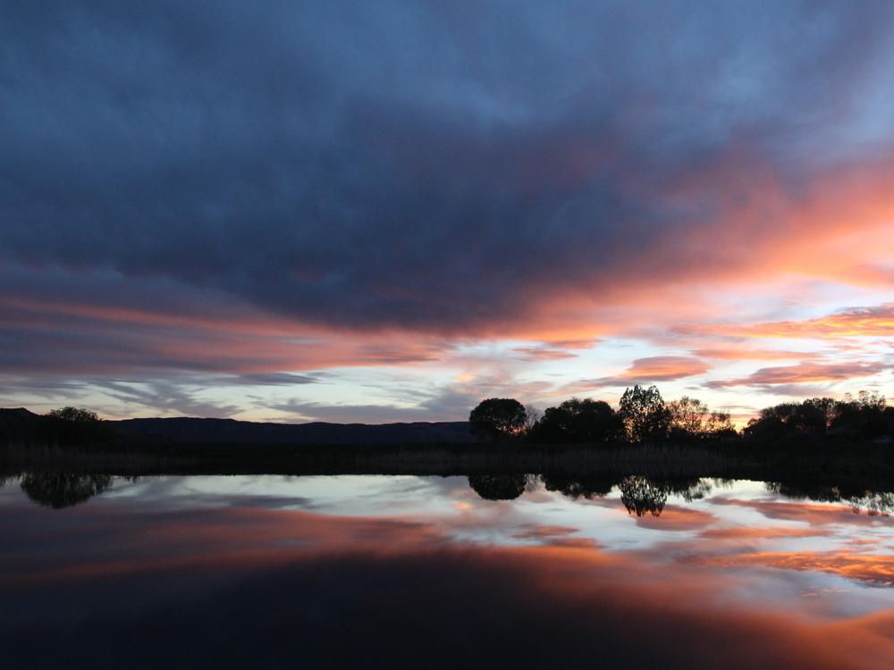 Basecamp pond at sunset