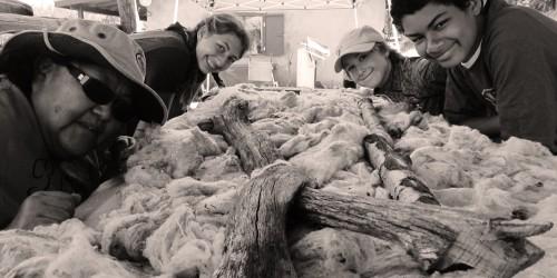 RMAservice-wool
