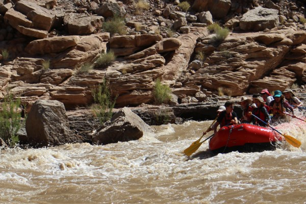 The group paddles through Government Rapid on the Lower San Juan River