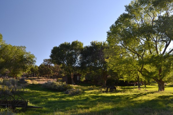 Deer Hill Basecamp in Mancos, CO