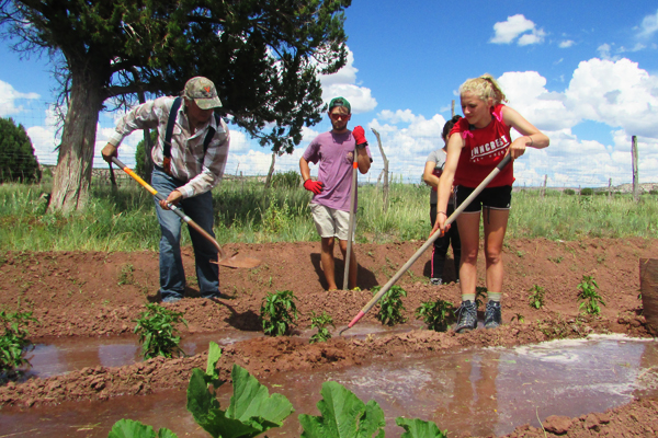Irrigation gardening in Zuni Pueblo